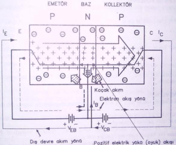 Pnp Tipi Transistörün Polarılması