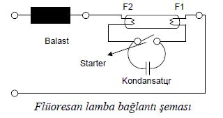 floresan-lamba